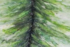 Nr. 90 | Bäume ausreißen