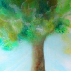 Frühling Holz Baum Sonne Entspannung